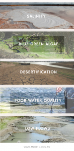Here are some of the major ecological issues in the Murray-Darling Basin, Australia